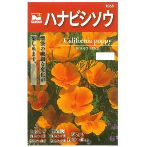 ハナビシソウの種 花タネ|engei