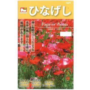 ひなげしの種 花タネ|engei