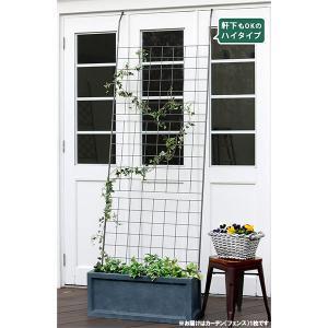 送料無料 アイアン製グリーンカーテン グラフ1枚(幅90cm、高さ240cm) engei