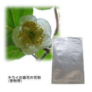 果樹の苗/タネ キウイの花粉(キウイ受粉用)...