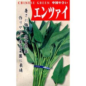 エンサイ(空芯菜)  野菜タネ|engei