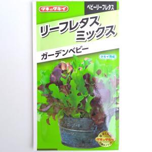 レタス:新鮮とれたてサラダミックス ガーデンベビー* タキイ 野菜タネ