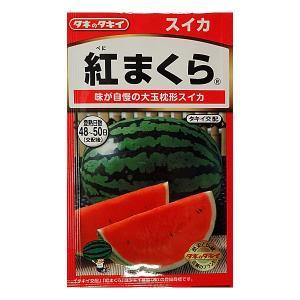 甘い香りで高糖度。栽培容易な大玉枕形スイカです。食味は酸味を抑えて甘さが際立ち、独特の甘い香りを持ち...
