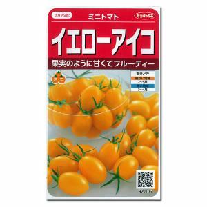 トマト:ミニトマト イエローアイコ サカタ 野菜タネ