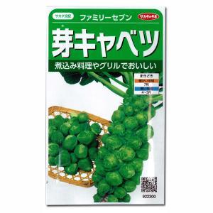 有効期限19年10月 芽キャベツ:ファミリーセブン サカタ 野菜タネ|engei