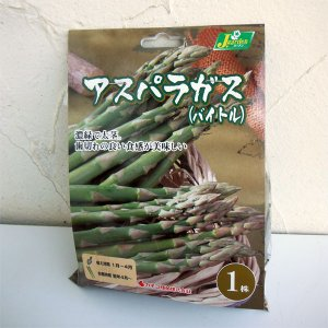 野菜の苗/野菜球根パック:アスパラガス・バイトル1株