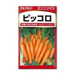 ニンジン: ミニニンジン ピッコロ タキイ 野菜タネ *