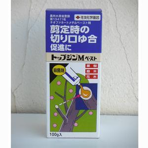 癒合剤:トップジンMペースト100g