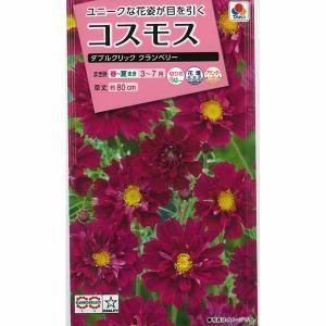有効期限19年10月 コスモス:ダブルクリック クランベリーの種 タキイ 花タネ|engei