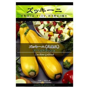 表皮が薄く生で食べやすい・野菜タネ ズッキーニ:ゴールドラッ...