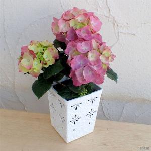 ★開花終了株でのお届けとなります★どこにでも飾れる可愛いアジサイ。水が大好きなアジサイなのでキッチン...