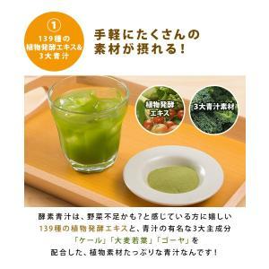 青汁 酵素青汁 国産 3大青汁 抹茶風味 飲みやすい 続けやすい お試し 60包 分包タイプ 大麦若葉 ゴーヤ ケール 安心 enjoy-home 05