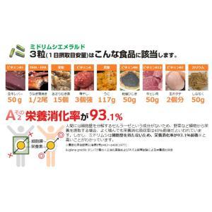 ミドリムシエメラルドユーグレナグラシリス加工食品 みどりむし|enjoy-tokusenkan|04
