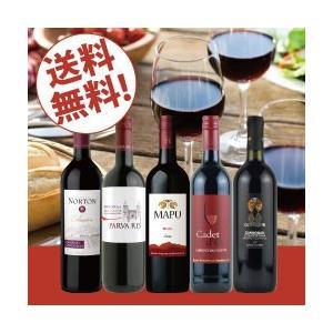 赤ワインセット / エノテカ売れ筋赤ワイン5本セット RC10-1 / 750mlx5 / 送料無料|enoteca-online