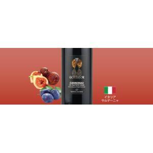 赤ワインセット / エノテカ売れ筋赤ワイン5本セット RC10-1 / 750mlx5 / 送料無料|enoteca-online|03