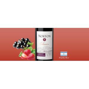 赤ワインセット / エノテカ売れ筋赤ワイン5本セット RC10-1 / 750mlx5 / 送料無料|enoteca-online|05