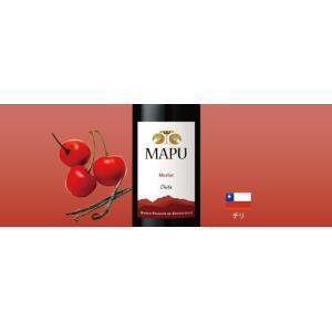 赤ワインセット / エノテカ売れ筋赤ワイン5本セット RC10-1 / 750mlx5 / 送料無料|enoteca-online|06
