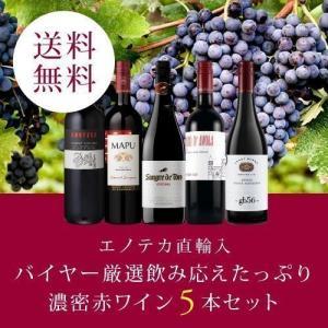 ワイン ワインセット エノテカ直輸入 バイヤー厳選飲み応えたっぷり濃密赤ワイン5本セット EB4-1...