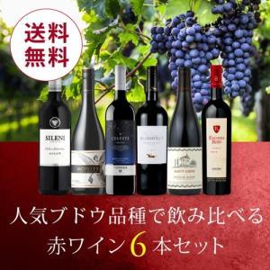 ワイン ワインセット 人気ブドウ品種で飲み比べる赤ワイン6本セット VB4-1 [750ml x 6...