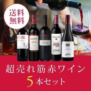 ワイン ワインセット エノテカ厳選!超売れ筋赤ワイン5本セット RC5-1 [750ml x 5] ...