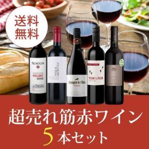 ワイン ワインセット 赤ワインセット エノテカ厳選!超売れ筋赤ワイン5本セット RC6-1 [750ml x 5] 送料無料