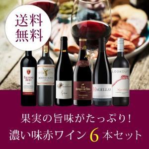 【送料無料】RICH TASTE RED WINE 6BOTTLES SET  VB8-1 [750...