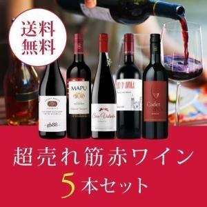 【10/28以降出荷】ワイン ワインセット エノテカ厳選!超売れ筋赤ワイン5本セット RC9-2 [750ml x 5] 送料無料|ワイン通販エノテカ