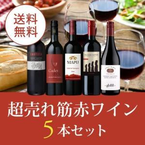 ワイン ワインセット 赤ワインセット エノテカ厳選!超売れ筋赤ワイン5本セット RC10-1 [750ml x 5]  送料無料
