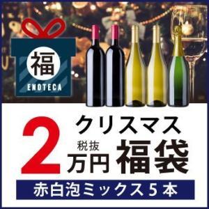 【12/1以降出荷】ワイン ワインセット 期間限定 クリスマス福袋20,000円(赤白泡ミックス5本...