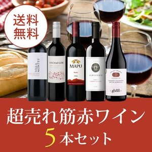 ワイン ワインセット エノテカ厳選!超売れ筋赤ワイン5本セット RC12-2 [750ml x 5] 送料無料