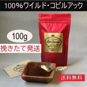 【100g】100%ワイルド コピルアック コピルアク ジャコウネココーヒー エンリッチメントコーヒー|enrico