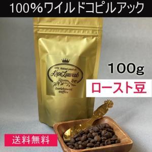 【100g】【ロースト豆】100%ワイルド コピルアック コピルアク ジャコウネコ エンリッチメントコーヒー|enrico