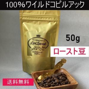 【50g】【ロースト豆】100%ワイルド コピルアック  野生ジャコウネコ コピルアク ジャコウネココーヒー|enrico