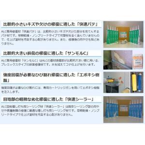 旭化成建材AK補修用シーラー500g(外壁修復材)従来のモルタック等の使用も可能 アウトレット特価品配送無料(一部地域を除く) ensin 02