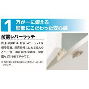 配送無料薄型多目的耐震レバーラッチ付吊戸棚W750mm × D210mm × H410 + 25mm消臭コーティング背板採用|ensin|02