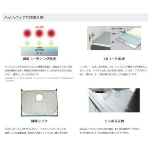 配送無料間口600mm流し台KW-600A(エリア限定)W600mm × D550mm × H800+90mm消臭コーティング背板採用|ensin|02