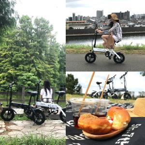 電動自転車 折りたたみ Hold On Q1 電動アシスト自転車 おしゃれ 安い パールホワイト/ナイトブルー/メタリックカーキ メーカー直送のため代引不可|enteron-kagu-shop|06
