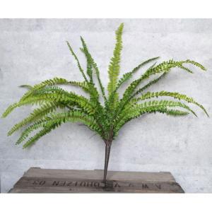 いなざうるす屋 フェイクグリーン タマシダ 壁飾り 壁掛けインテリア 観葉植物 ウォールデコレーション 緑 壁掛け インテリア|enteron-kagu-shop