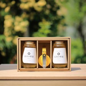 はちみつ 国産 低GI値 はちみつギフト プレミアム アカシア蜂蜜450g×2本セット 純粋 無添加 ギフト 坂井養蜂場  |enteron-kagu-shop
