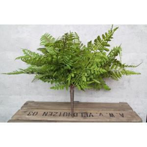 いなざうるす屋 フェイクグリーン 大きなシダシダミックス 壁飾り 壁掛けインテリア 観葉植物 ウォールデコレーション 緑 壁掛け インテリア|enteron-kagu-shop