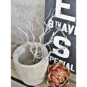 いなざうるす屋 フェイクグリーン ワシャワシャブランチ 壁飾り 壁掛けインテリア 観葉植物 ウォールデコレーション 緑 壁掛け インテリア|enteron-kagu-shop