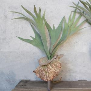 フェイクグリーン ツンツン葉っぱのコウモリランS 観葉植物 フェイク グリーン インテリア 雑貨 引っ越し 1人暮し 模様替え いなざうるす屋|enteron-kagu-shop