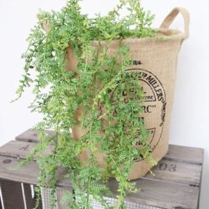 フェイクグリーン 元祖モフモフ 観葉植物 フェイク グリーン インテリア 雑貨 いなざうるす屋|enteron-kagu-shop