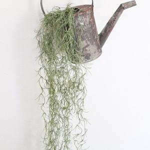 フェイクグリーン モシャモシャモス 観葉植物 フェイク グリーン インテリア 雑貨 いなざうるす屋|enteron-kagu-shop