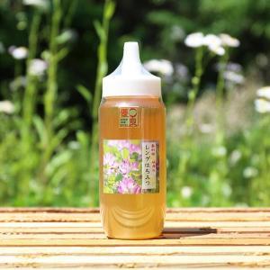 はちみつ 国産 レンゲ蜂蜜500gRG500/坂井養蜂場 ※メーカー直送のため代引き不可|enteron-kagu-shop