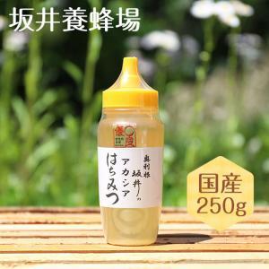 はちみつ 国産 特選アカシア蜂蜜 250gTA250/坂井養蜂場|enteron-kagu-shop