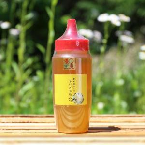 はちみつ 国産 キハダ蜂蜜500gKH500/坂井養蜂場|enteron-kagu-shop