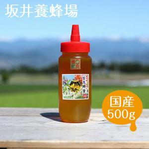 はちみつ アルゼンチン産 百花蜂蜜500gH500/坂井養蜂場 アルゼンチン産|enteron-kagu-shop