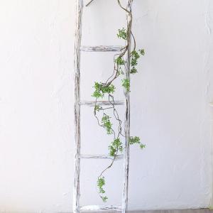 ねじねじ枝ロング いなざうるす屋 壁飾り イミテーショングリーン 壁掛けインテリア 観葉植物 ウォールデコレーション フェイクグリーン|enteron-kagu-shop