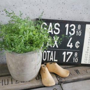 いなざうるす屋 フェイクグリーン モフモフドーム 壁飾り 壁掛けインテリア 観葉植物 ウォールデコレーション 緑 壁掛け インテリア|enteron-kagu-shop